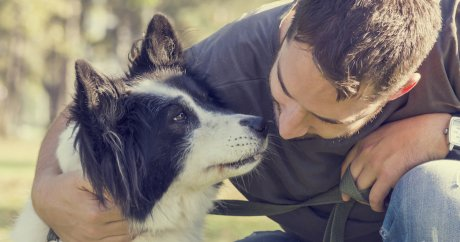 5 Ways To Improve The Health Of Your Animal